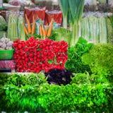 Sale av nya organiska olika sorter av grönsaker och gräsplaner i basar för bonde` som s är öppna ställer ut av grönsakmarknad royaltyfri foto