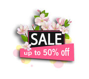 Sale background with flowers. Season discount banner design with cherry blossoms and petals. Stock Image