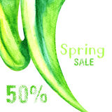 Sale background. Green spring sale background with 50% off Stock Photo