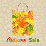Sale bag of autumn leaves Royalty Free Stock Photo