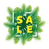 Sale banner design. Summer sale banner design with green palm leaves Royalty Free Stock Photography