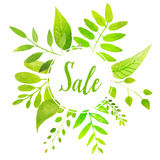 Sale banner with green hand drawn leaves. Fresh Stock Image