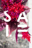 Sale banner. Letters in flowers. Modern stylish solution for you design. Red . White Stock Image
