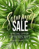 Sale banner, poster with palm leaves, jungle leaf and handwriting lettering. Floral tropical summer background. Vector. Illustration EPS10 Stock Photo