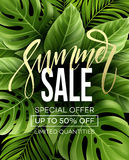 Sale banner, poster with palm leaves, jungle leaf and handwriting lettering. Floral tropical summer background. Vector. Illustration EPS10 Royalty Free Stock Photos