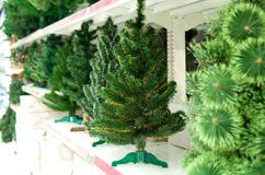 Sale of bare Christmas tree Stock Images