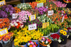 Sale of blooming tulips at market Royalty Free Stock Photos