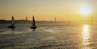 Sale boats sailing near the shores of Lisbon royalty free stock images