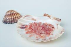 Sale da bagno rosa del mare in una conchiglia bianca con un altro nei precedenti Fotografia Stock
