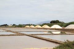 Il sale accatasta vicino agli stagni di secchezza Immagini Stock