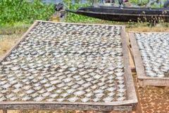 Sale del pesce dei pesci essiccati asciutto sulla griglia del ferro Fotografie Stock