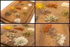 Sale e Herb Collection Immagine Stock Libera da Diritti