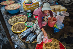 Sale of fish and seafood in market Stock Image