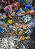 Sale of fish and seafood in market Stock Photography
