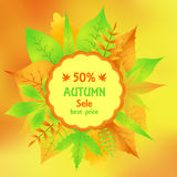 Sale flyer a discount on autumn blurred background  Royalty Free Stock Photography