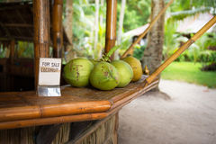 Sale of fresh green coconuts Royalty Free Stock Photo
