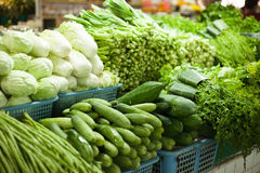Sale of fresh vegetables Stock Images