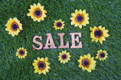 Sale grass flowers Royalty Free Stock Photo