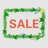 Sale grass frame vector illustration
