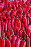 Sale of hot red pepper Royalty Free Stock Photography