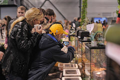Sale of insects and reptiles. Exhibition and sale of insects and reptiles, St. Petersburg, Russia Stock Images