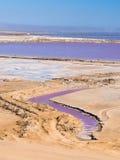 Sale las cacerolas en la bahía de Walvis, Namibia, África foto de archivo libre de regalías