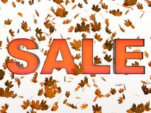 SALE in Maple leaves Stock Images
