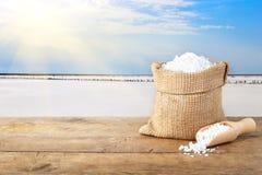 Sale marino con il lago salato nei precedenti immagini stock libere da diritti
