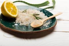 Sale marino con la pianta di vera dell'aloe ed il limone affettato sul piano d'appoggio di legno Fotografia Stock Libera da Diritti