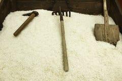 Sale marino immagazzinato per gli strumenti elaborati e vecchi Immagini Stock
