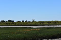 Sale Marsh Nature Park, 5 di Carpinteria immagine stock