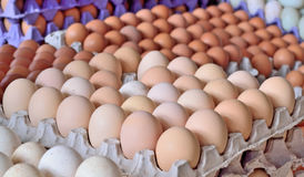 Sale Of Domestic Chicken Eggs On The Market Royalty Free Stock Images