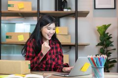 Sale of online asian woman special she is satisfied with sales success royalty free stock photography