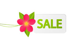 Sale paper tag with flower Stock Images