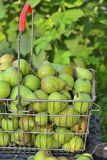 Sale pears in basket on market Stock Photo