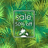 Sale 50 percent off on palm tree background. Sale 50 percent off on green palm tree branches background. Vector illustration Royalty Free Stock Photography