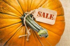 Sale price tag on pumpkin Stock Photos