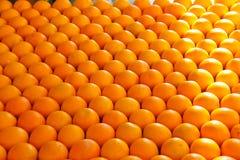 Sale of ripe oranges Stock Photo