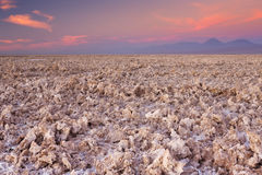 Sale a Salar de Atacama plano, desierto de Atacama, Chile en la puesta del sol Fotos de archivo