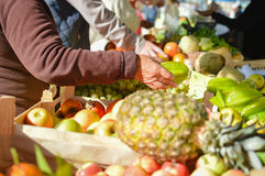 Sale, shopping, consumerism and pineapple in Royalty Free Stock Image
