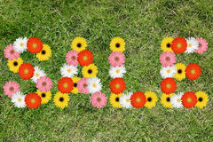 Sale shopping with flowers flower nature meadow grass stock photos