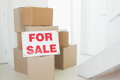 For sale sign with many cardboard boxes Royalty Free Stock Photo