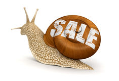 Sale Snail (clipping path included) Stock Images