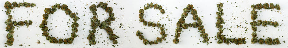 For Sale Spelled With Marijuana. The words For Sale spelled out with real marijuana stock image