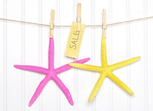 Sale Starfish with Sign on Clothesline Royalty Free Stock Photos