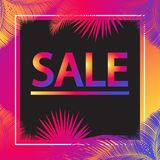 Sale sunset tropical palm leaves banner Stock Photos