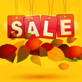 Sale tags with autumn leafs Stock Photo