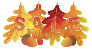 Sale Text on Fall Colors Oak Leaves Vector Illustration Stock Photography