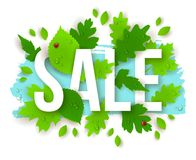 Sale Text with Spring Green Leaves Royalty Free Stock Image