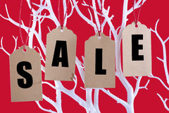 Sale tickets hanging from Winter tree branch royalty free stock photography